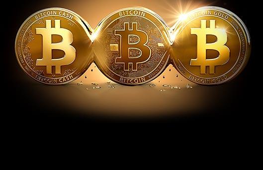 Bitcoin yoda poker